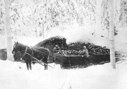 Kohlenkarren werden am Mailer mit Holzkohle beladen. Foto: Kulturarv Östergötland.