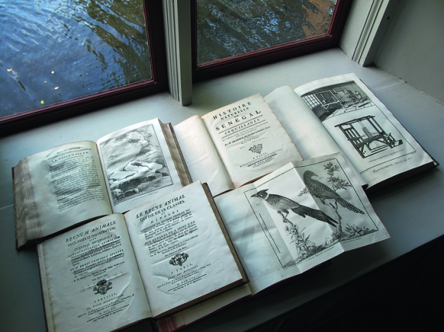 Ett urval böcker i biblioteket. foto: Erik Hamberg, 2018.